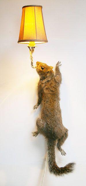 Decor: Taxidermy squirrel lights -Why didn't I think of that?