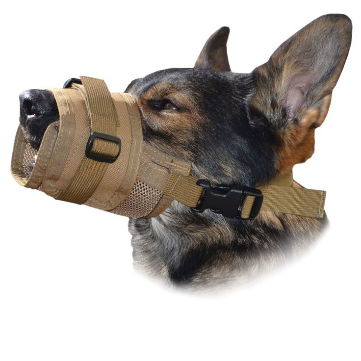 New Product! Made of Cordura and lightweight mesh, this new muzzle by Ray Allen is breathable, ultra adjustable and is easy to work with your dog.