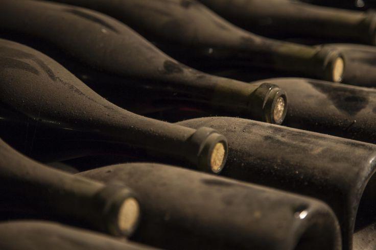 lagring av vin, iStock_000078295459_1800-red.jpg