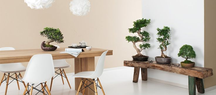 sandstein optik sch ner wohnen farbe w nde pinterest sandstein sch ner wohnen farben. Black Bedroom Furniture Sets. Home Design Ideas