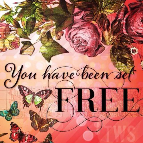 The Son Has Made You Free / John 8:36