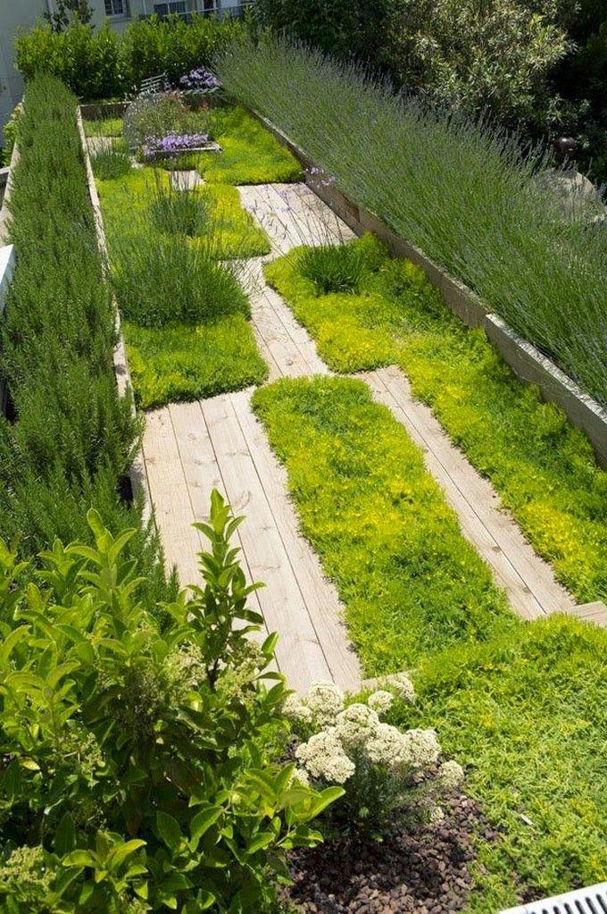 // Joan Roca's garden