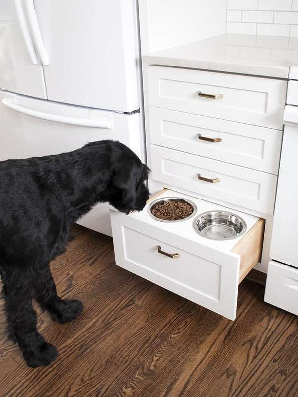 for the dogs 11 crazy home upgrades made by pet owners home rh pinterest com