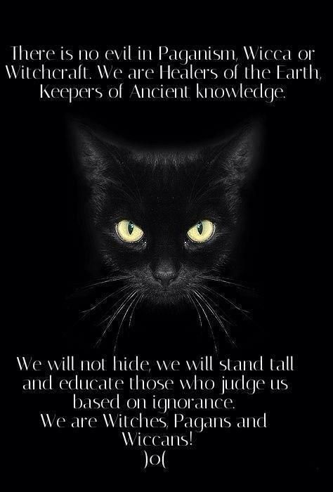 There is no evil in Paganism, Wicca or Witchcraft. We are Healers of the Earth, keepers of Ancient knowledge. We will not hide, we will stand tall and educate those who judge us based on ignorance. We are Witches, Pagans, and Wiccans! )O(
