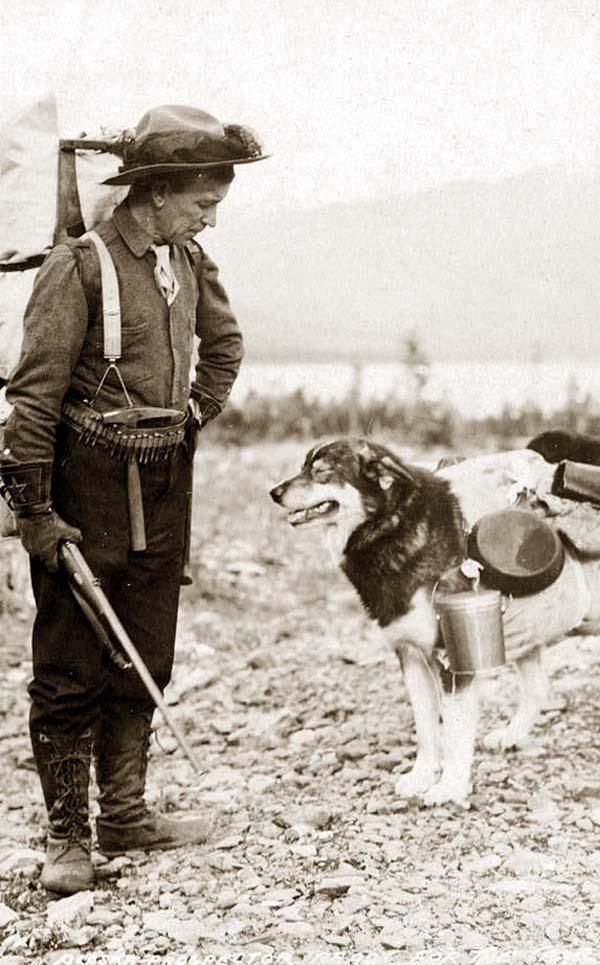 Old Picture of the Day: Prospector and his Pack Dog. This is an intriguing photograph of a Prospector and dog ready for the summer trail. It was taken in 1900 in Alaska.