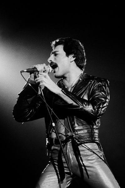 Freddie Mercurybüro h3 werbeagentur