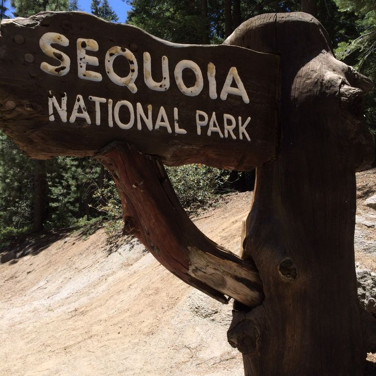 39 best sequoia and kings canyon national park images on pinterest