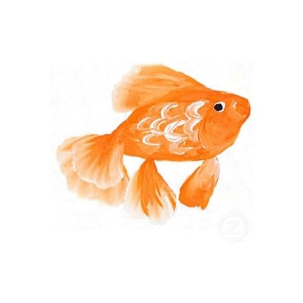 Gold Fish Painting found on Polyvore