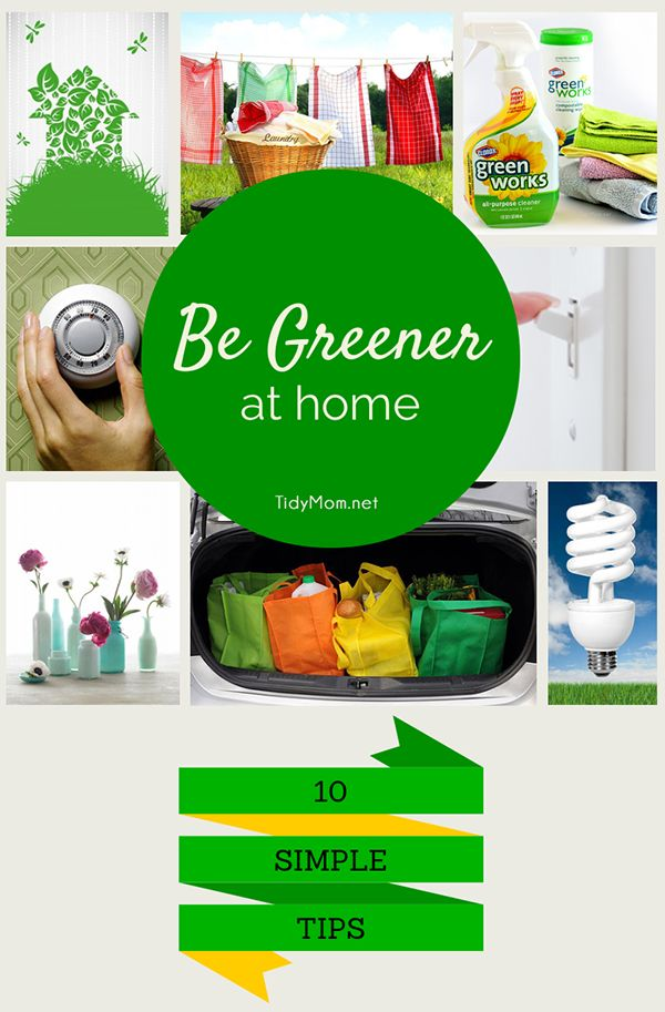 10 Simple Eco-Friendly Tips to Green Your Home.