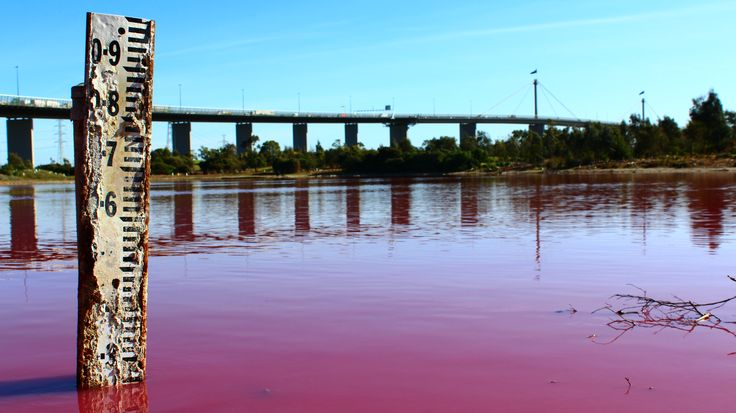 Pink lake of Westgate