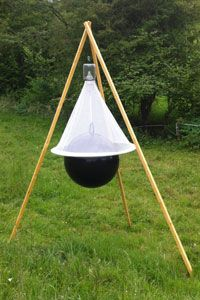 The cheapest Horse-fly Trap - Photos