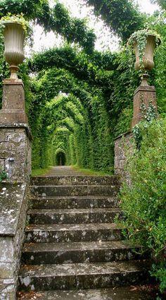 Ireland Den passenden Koffer für eure Reise findet ihr bei uns: www.profibag.de…