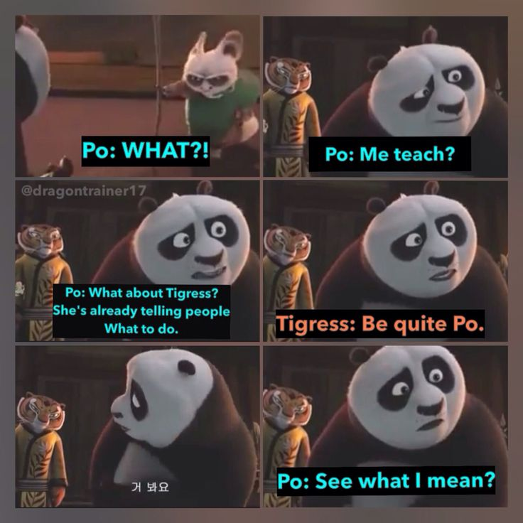 Po is me with responsibilities and Tigress is one of my responsible friends xD