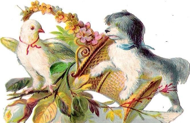 Oblaten Glanzbild scrap die cut chromo Hund dog chien Taube dove colombe pigeon