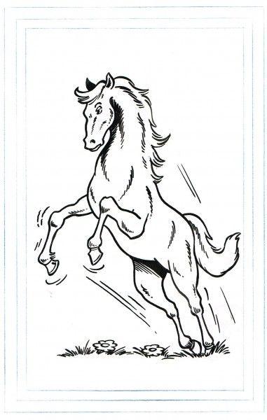 Paul Geerts. Origineel Het Rijmende Paard Kwartet. Zip. 1976 - W.B.