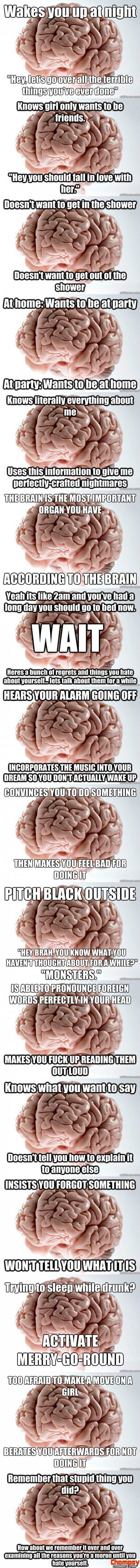 scumbag brain comp