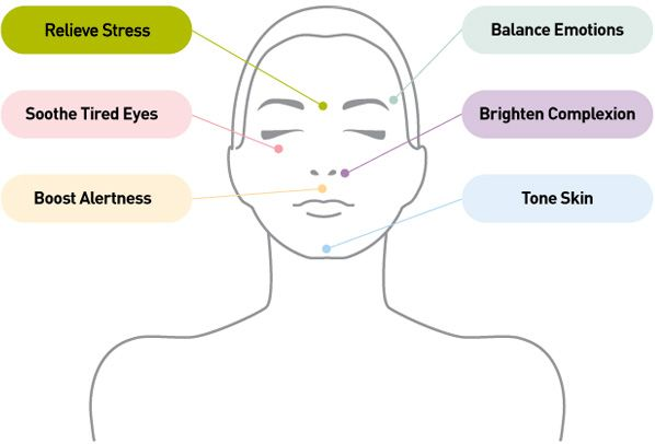 facial energy centres //   Ayurvedic massage stimulates special energy centres located on the face and body.//   When you have applied your oil, serum or cream press your chosen energy centre with your index or middle finger for 10 seconds, then relax and repeat. You can slowly rotate or pulse the pressure of your fingers at each location for deeper effect.