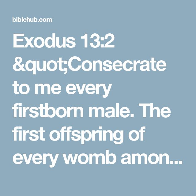 "Exodus 13:2 ""Consecrate to me every firstborn male. The first offspring of every womb among the Israelites belongs to me, whether human or animal."""