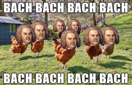 Best Chicken Jokes: 17 Best Ideas About Thanksgiving Meme On Pinterest