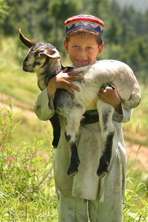 A little boy from Pakistan