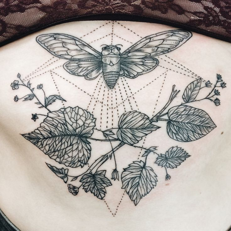 Cicada and leaves sternum tattoo.By Pony Reinhardt at Forbidden Body Art in Portland, OR USA. IG: freeorgy