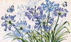 Картинки по запросу permin водные растения схема