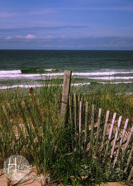cape cod bay <3 If you're fond of sand dunes and salty air, quaint little villages here and there....old Cape Cod!