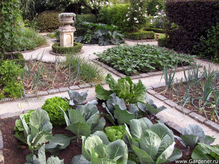 408 best Potager The Traditional Kitchen Garden images on