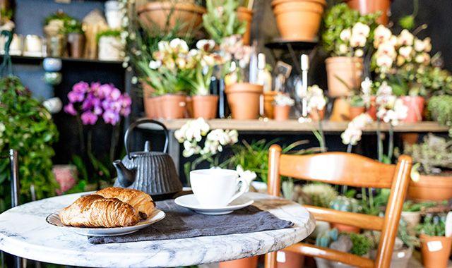 Le café fleuriste  Les 2 au coin, 7 rue Notre Dame de Bonne Nouvelle, 75002 Paris, 01 77 12 63 41. Ouvert du Mardi au samedi de 7h30 à 21h pour déjeuner/prendre le thé/goûter/l'apéro. Brunch à partir de 10h30 le dimanche