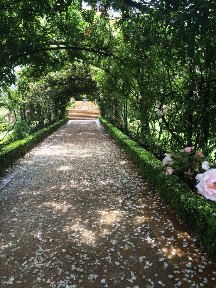 Morning star estate // garden wedding venue, Mornington peninsula in Victoria.