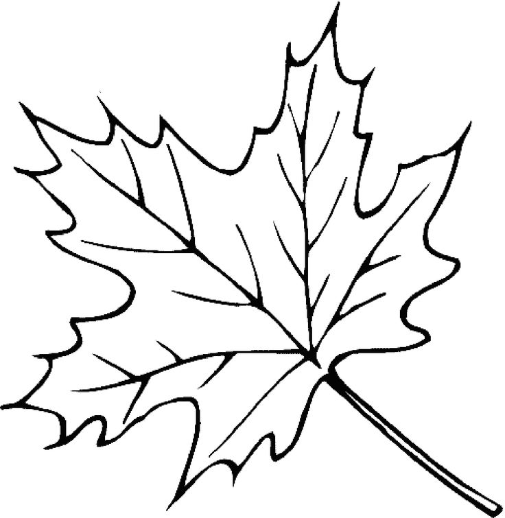 20 best leaves coloring pages images on Pinterest Coloring