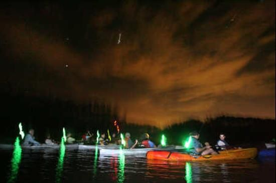 The Legacy Of Central Florida S Black Press: Bioluminescenct Kayak Tours