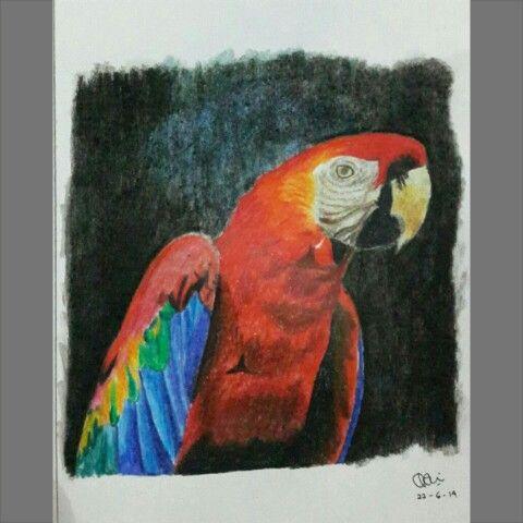 A5 paper- fabercastle pensilcolor