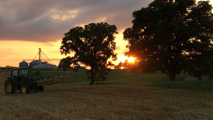 Picking up bales of straw with tractor before the sun sets.