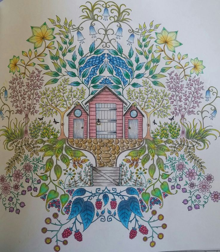 Secret Gardens Johanna Basford Diy Art Coloring Books Sheds Enchanted Fish The Garden Vintage
