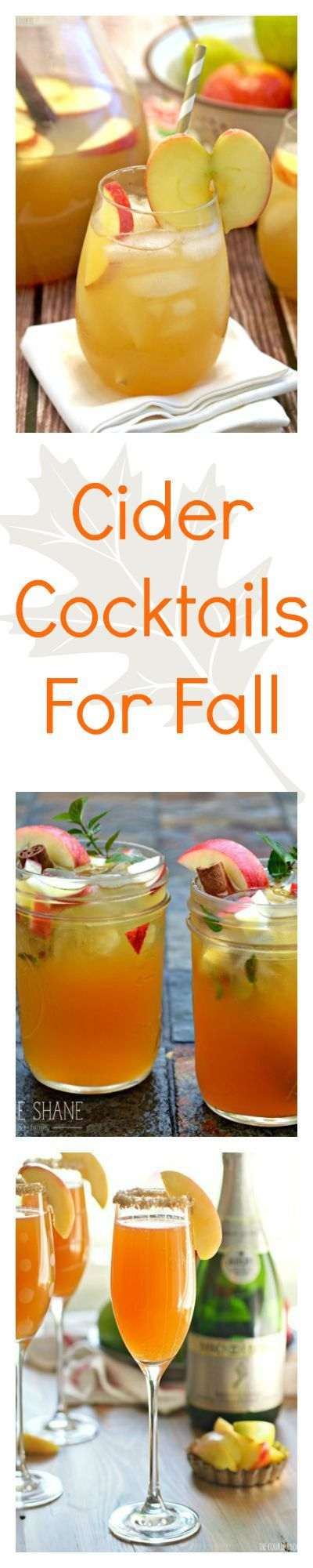 Apple cider is good, but you'll love these takes on the fall classic that turn your favorite drink into party ready cocktails. These drink recipes are perfect for autumn!