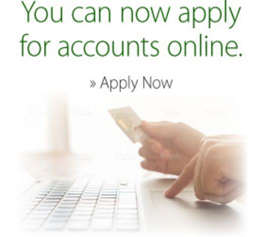 Faxless cash advance loans picture 8
