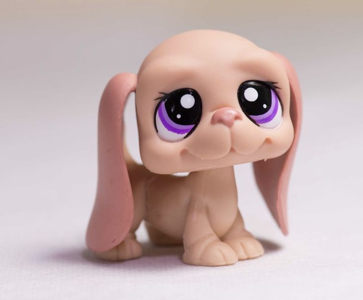 Find the largest collection of Littlest Pet Shop toys here in the LPS pet store! View LPS toys, figures & collectibles like LPS cats, LPS dogs, and much more! OUR SITES HAVE CHANGED. Thank you for visiting! At Hasbro, we strive to provide our customers with the best possible experience with our portfolio of brands. As a valued customer, we wanted to let you know that the LITTELEST PET SHOP.