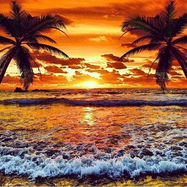 Summer Sunset. Gorgeous!