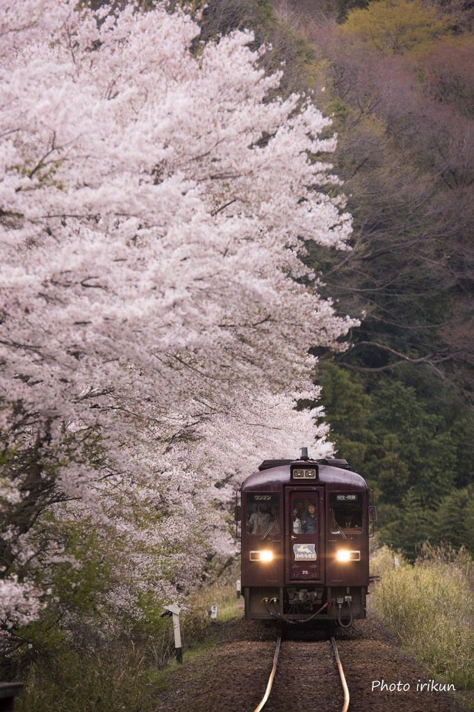 Watarase Keikoku Railway, Gunma