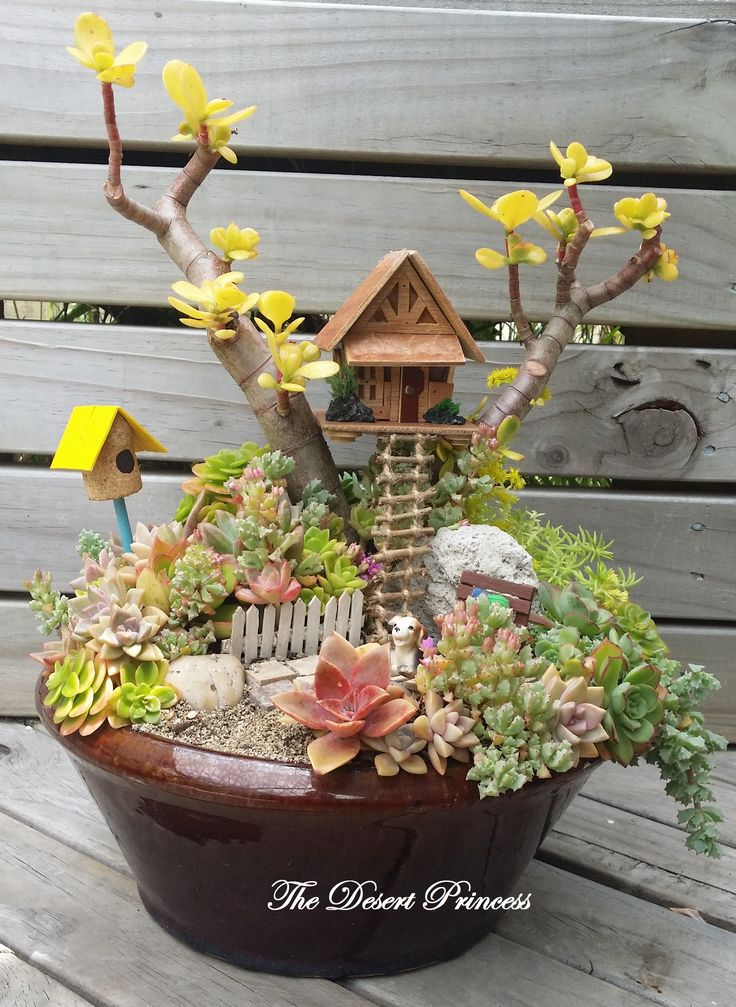 succulent treehouse fairy garden design by the desert princess wwwfacebookcomthedesertprincess1006