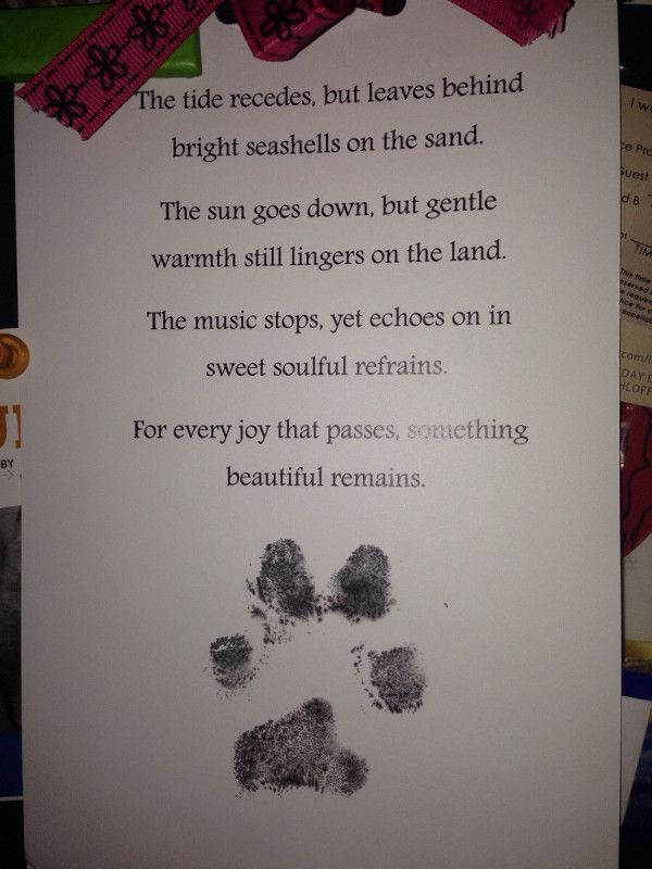 Words matter. Beautiful note/pawprint from their vet after putting their dog down :'(