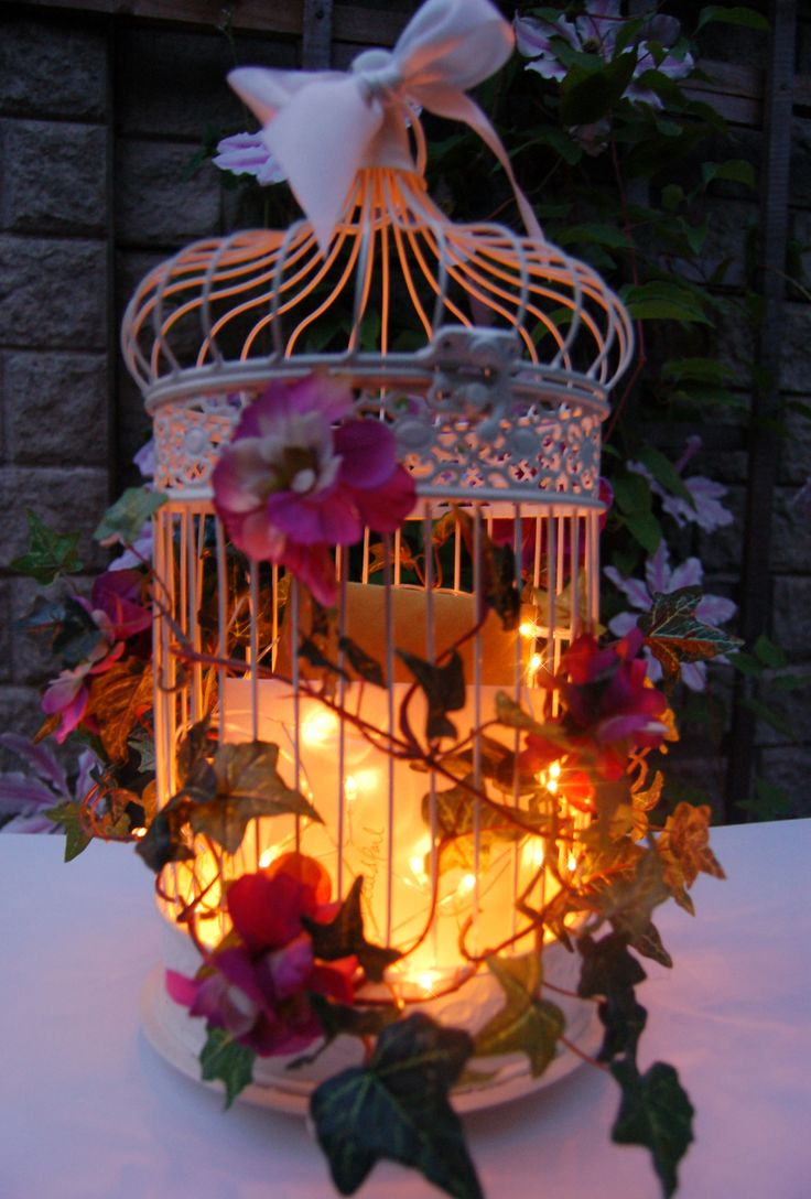 Bird Cage with fairylights at night