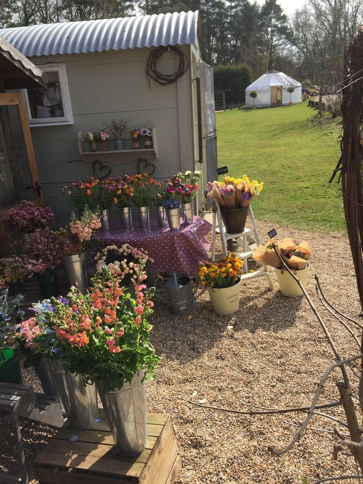 Our little Shepherds Hut Flower Shop www.theenchantedflower.co.uk