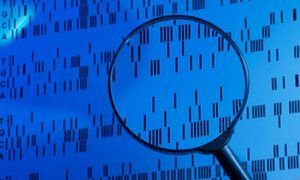 The research also revealed that carrying more than one of the potentially harmful mutations results in a higher likelihood of developing…