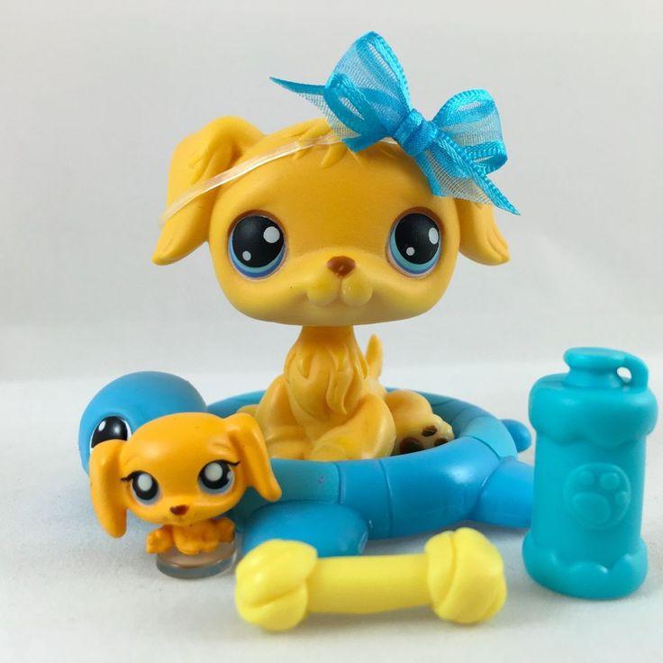 Littlest Pet Shop Cute Golden Retriever #21 w/Matching Teensie & Accessories #Hasbro