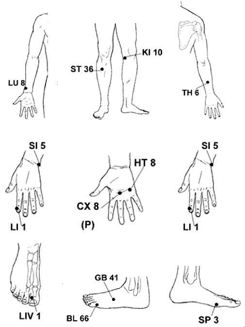 free acupuncture point diagram