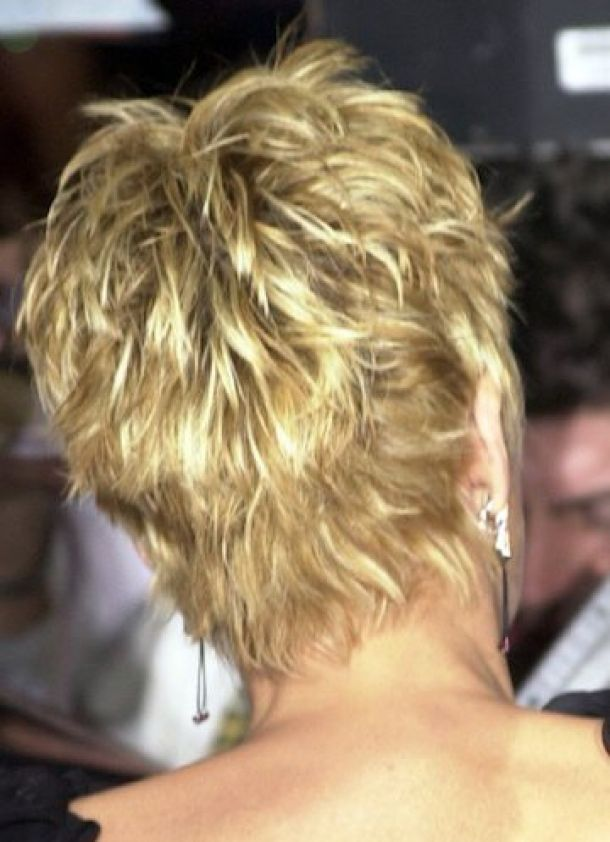 sharon stone short shag from the back | ... sharon stone showing back of hair | sharon stone back short hairstyle