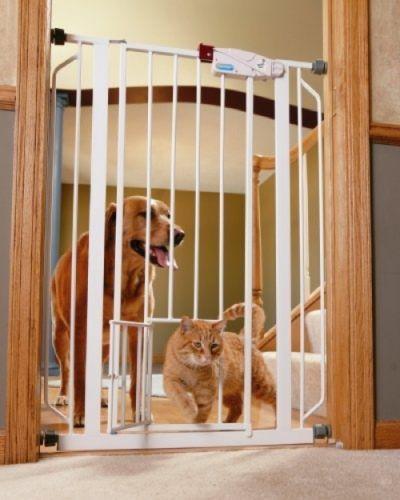 Buy Extra Tall Pet Gate w/ Extension Kit w/ Doggy Door Stairs Door Doorway Chewproof at online store