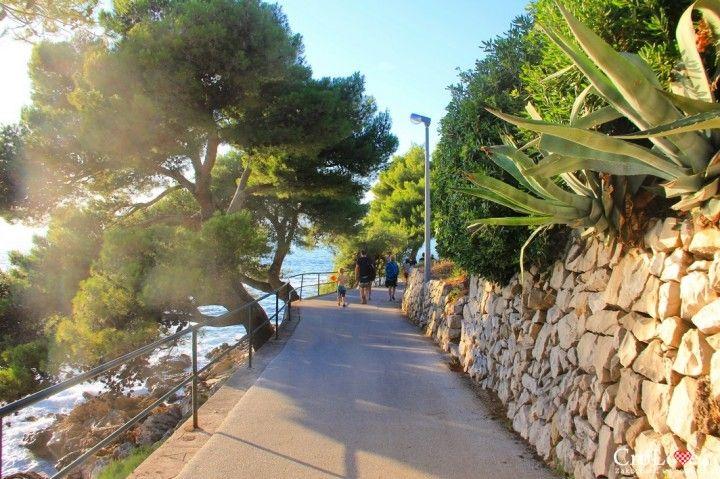 Jedna z alejek nad Adriatykiem w Cavtacie || http://crolove.pl/cavtat-spokojne-i-urokliwe-miasteczko-w-poludniowej-dalmacji/ || #Cavtat #Dubrownik #Chorwacja #Croatia
